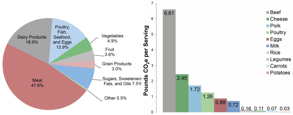 Emissions due to food choice